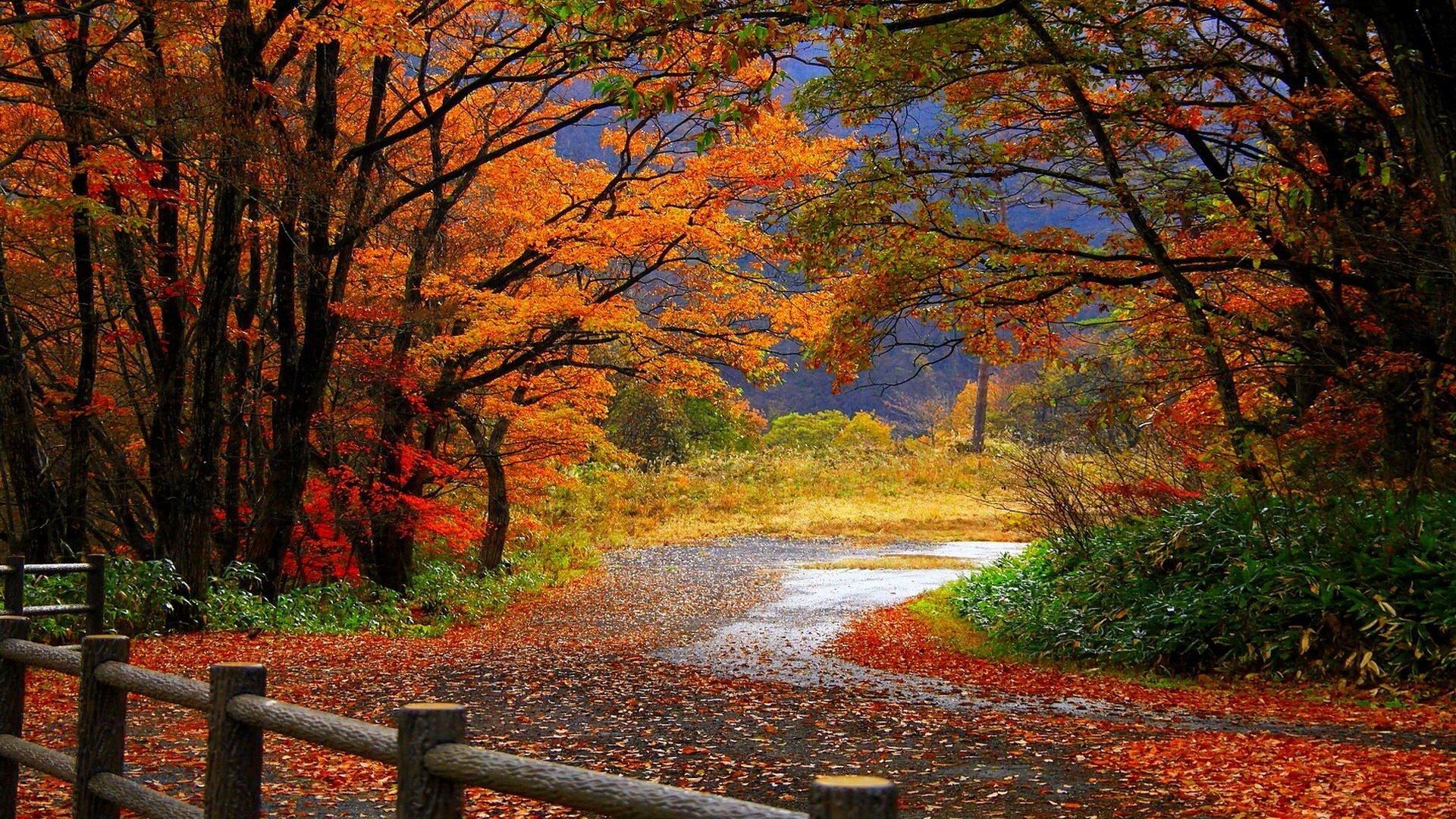 Equinozio d'autunno: curiosità e leggende