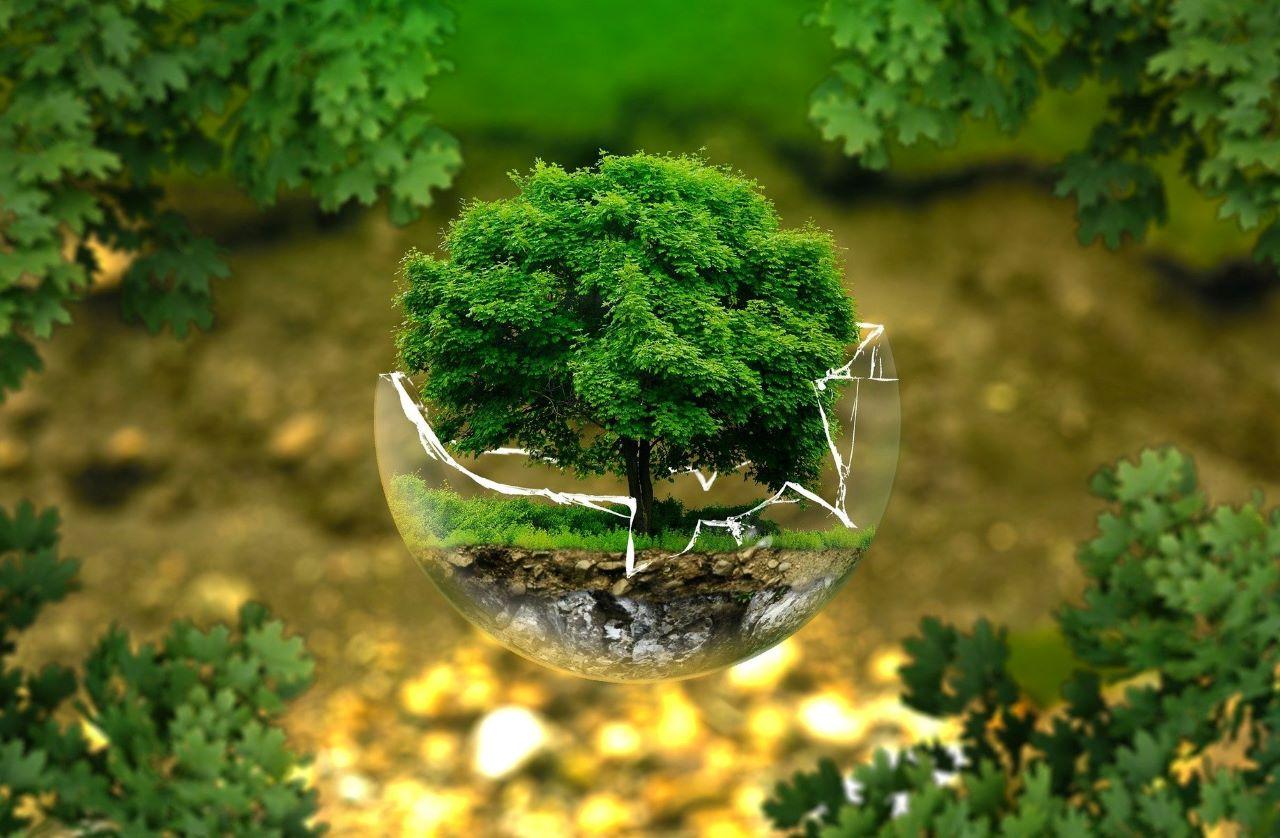 Terra Giornata mondiale 22 aprile buone pratiche